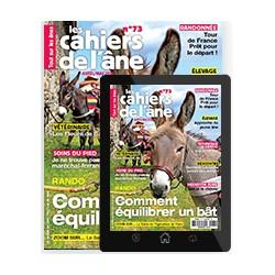 Abonnement magazine papier + numérique