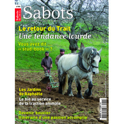 Sabots n°48