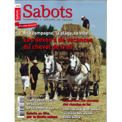 Sabots n°44