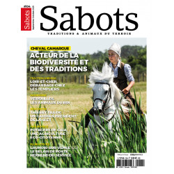 Sabots n°104