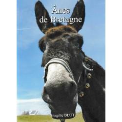Ânes de Bretagne - Brigitte Blot
