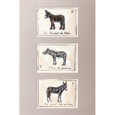 Tirages d'art dessin cahiers de l'âne