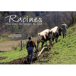 Racines : hier dans les Vosges du sud