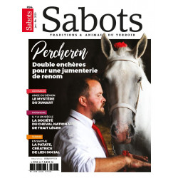 Sabots n°94
