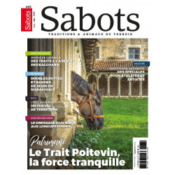 Sabots n°93