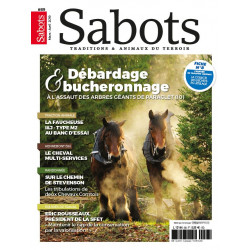 Sabots n°89