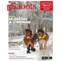 Sabots n°82