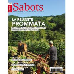 Sabots n°70