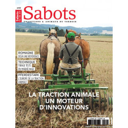 Sabots n°69