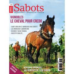 Sabots n°67