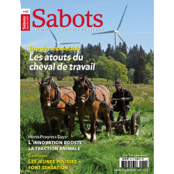 Sabots n°62