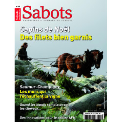Sabots n°58